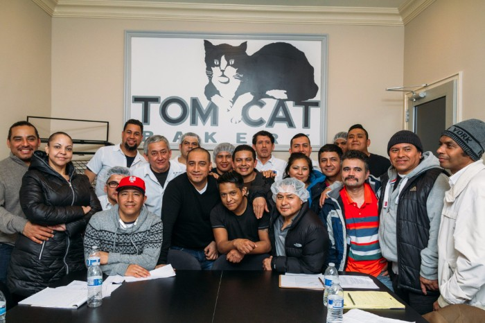 Tom Cat negotiation