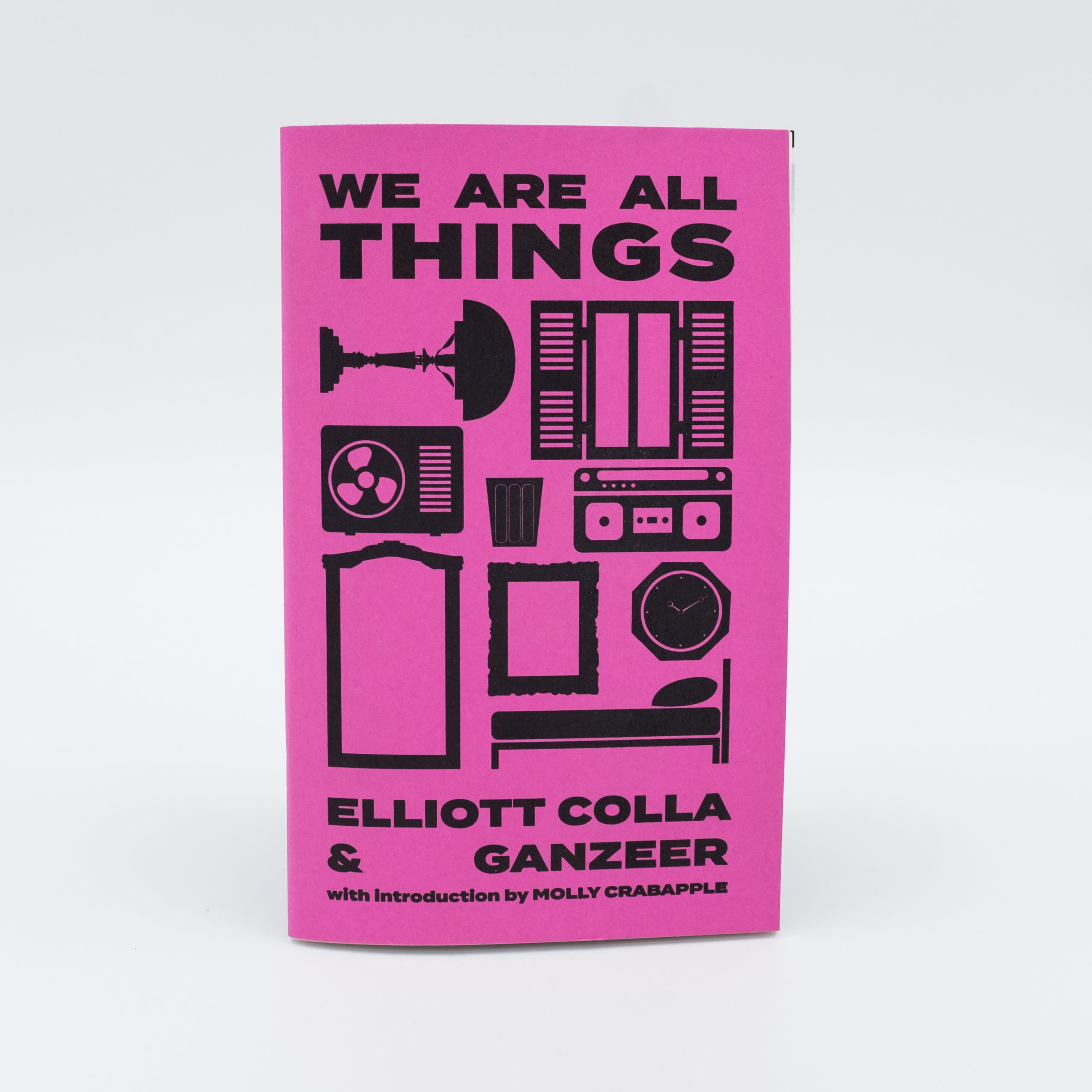 WE ARE ALL THINGS by Elliott Colla & Ganzeer